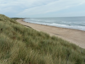Druridge Bay view north from sand dunes